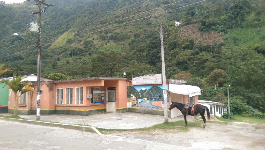 Horse tied to pole in Villerestrepo