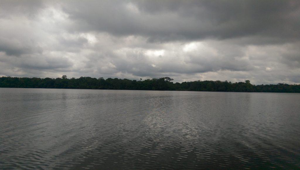 View across The Amazon